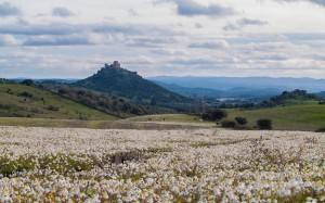 Vista general del castillo de Burguillos del Cerro y su entorno natural.